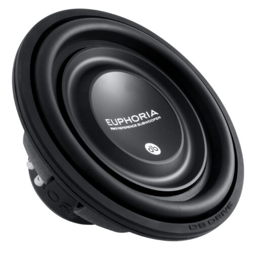 Loa Subwoofer 12in EW9 12D4
