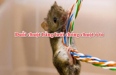 Cách làm lưới chống chuột