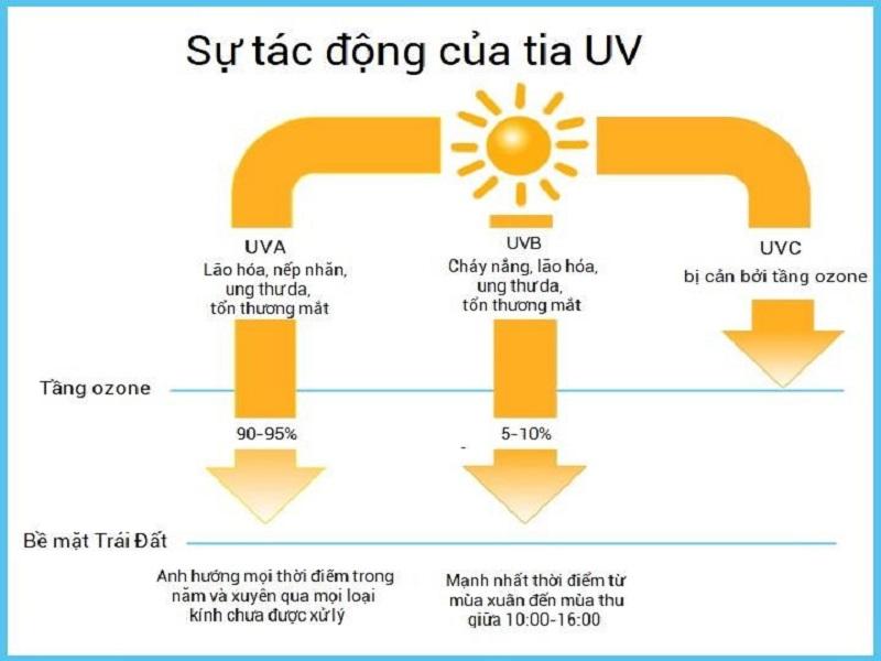 Tia UV tác động sâu vào bên trong da gây nên các bệnh lý cho da